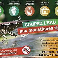Coupez l'eau aux moustiques